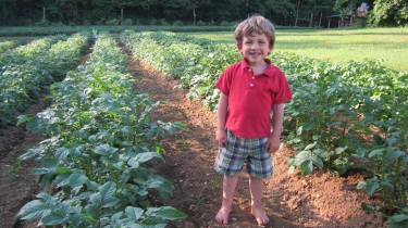 oliver in the adopt a crop field.jpg